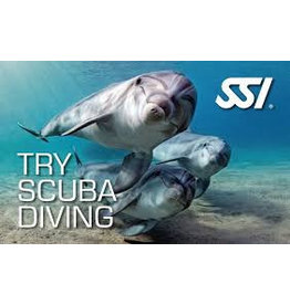 SSI  Basic Diver - Buitenwater Vinkeveen - Try Scuba Diving