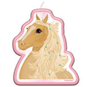 Kaars paard beautiful horse