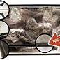 3D Rock Lux Yosmite 100x40x50 cm