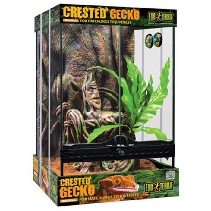 Naturalistic Terrarium Crested Gecko Kit With Terrarium (30x30x45 cm)