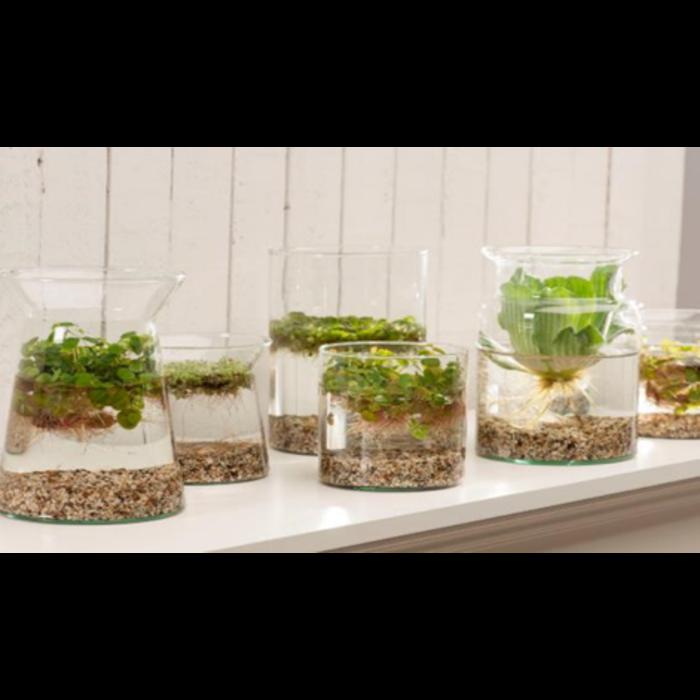 mini vase étang (20840) par 5 pc
