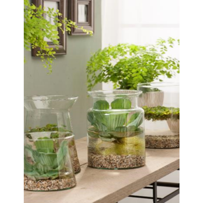 vase étang en verre