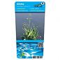 Alisma plantago-aquatica (verpakt per 6 stuks) 10040