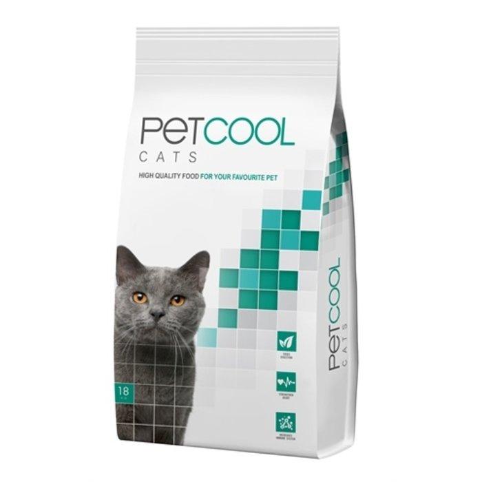 Petcool cat