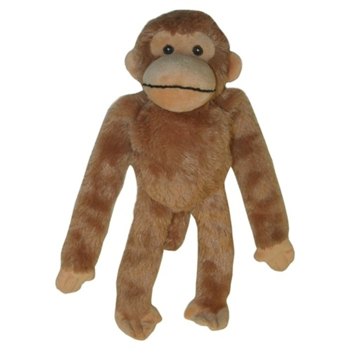 Multipet swinger chimpansee
