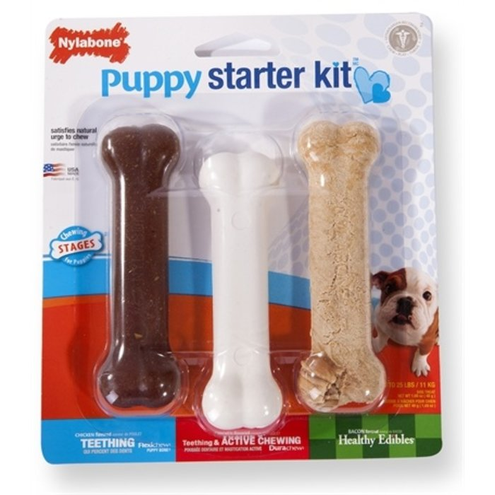 Nylabone puppy chew puppy starter kit
