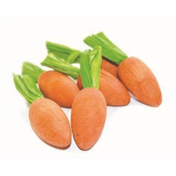 Happy pet carrot nibblers knaaghout
