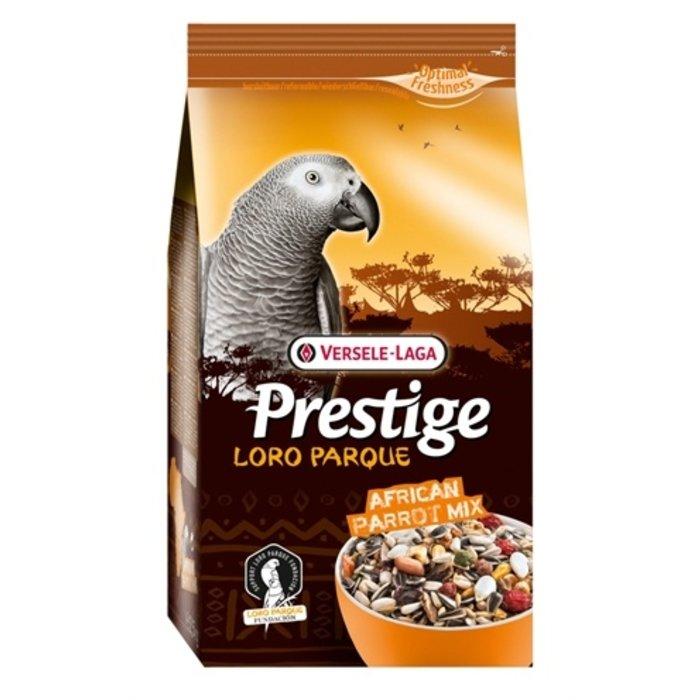 Prestige premium afrikaanse papegaai
