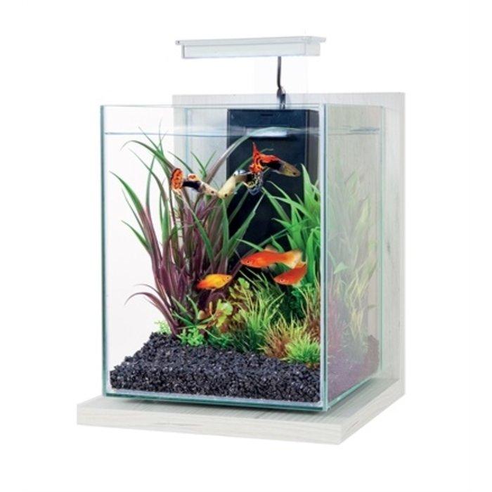 Zolux aquarium kit jalaya antique wit