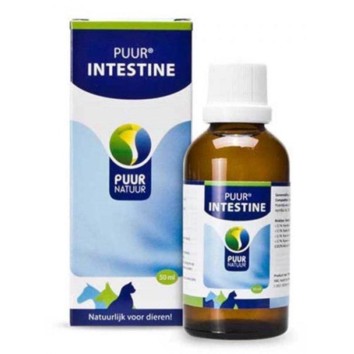 Puur natuur intestine (darm)