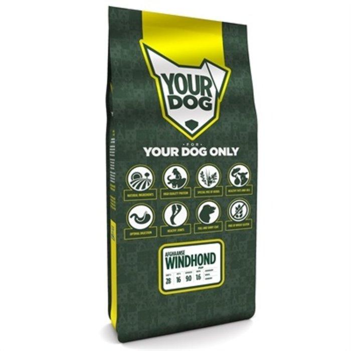 Yourdog afghaanse windhond pup