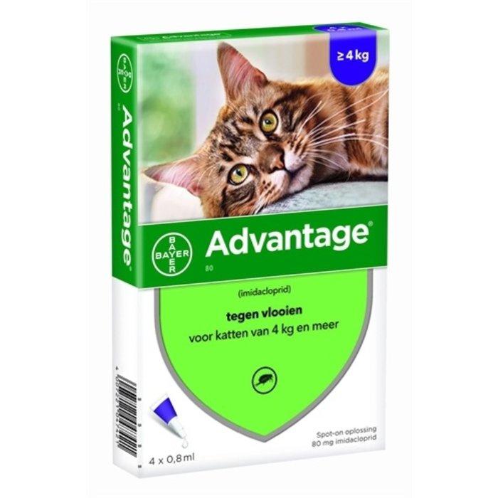 Bayer advantage kat 4 pipetten