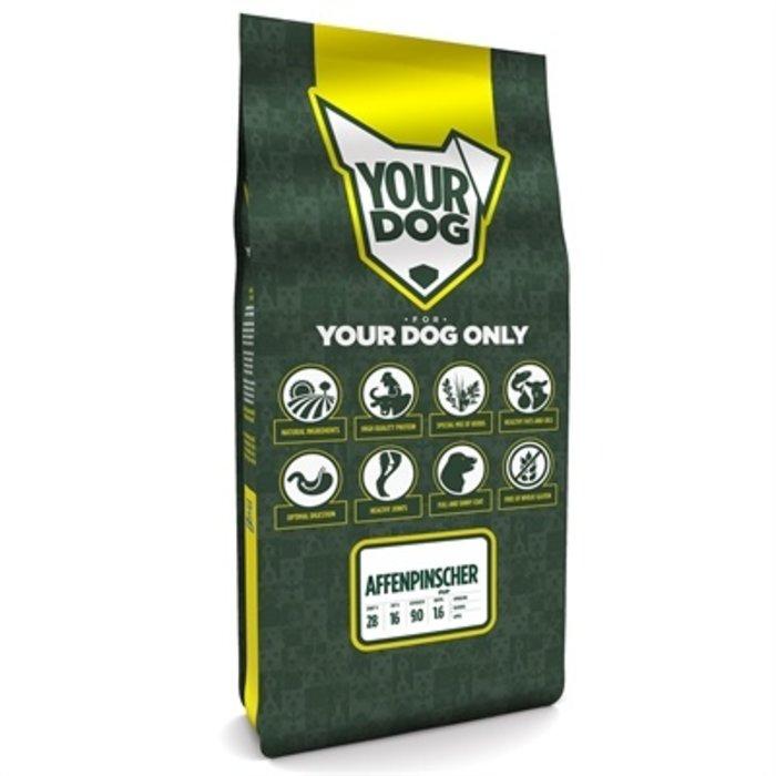 Yourdog affenpinscher pup