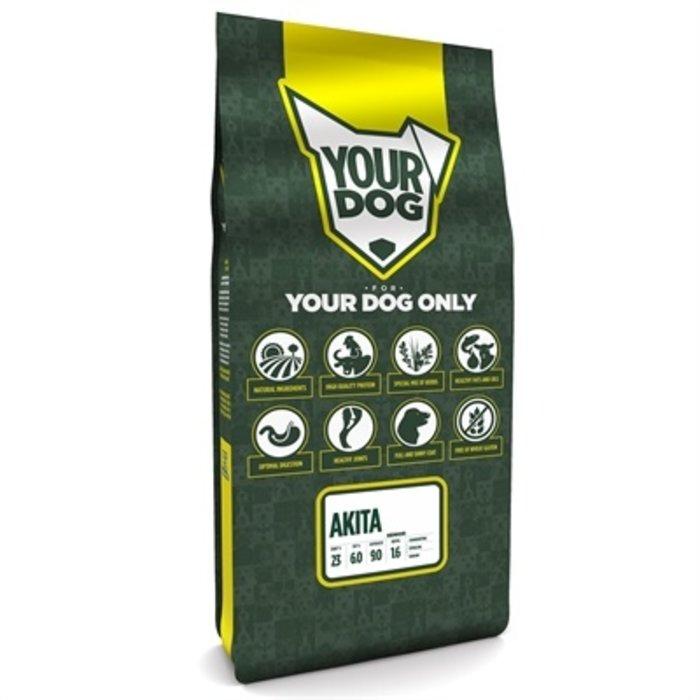 Yourdog akita senior