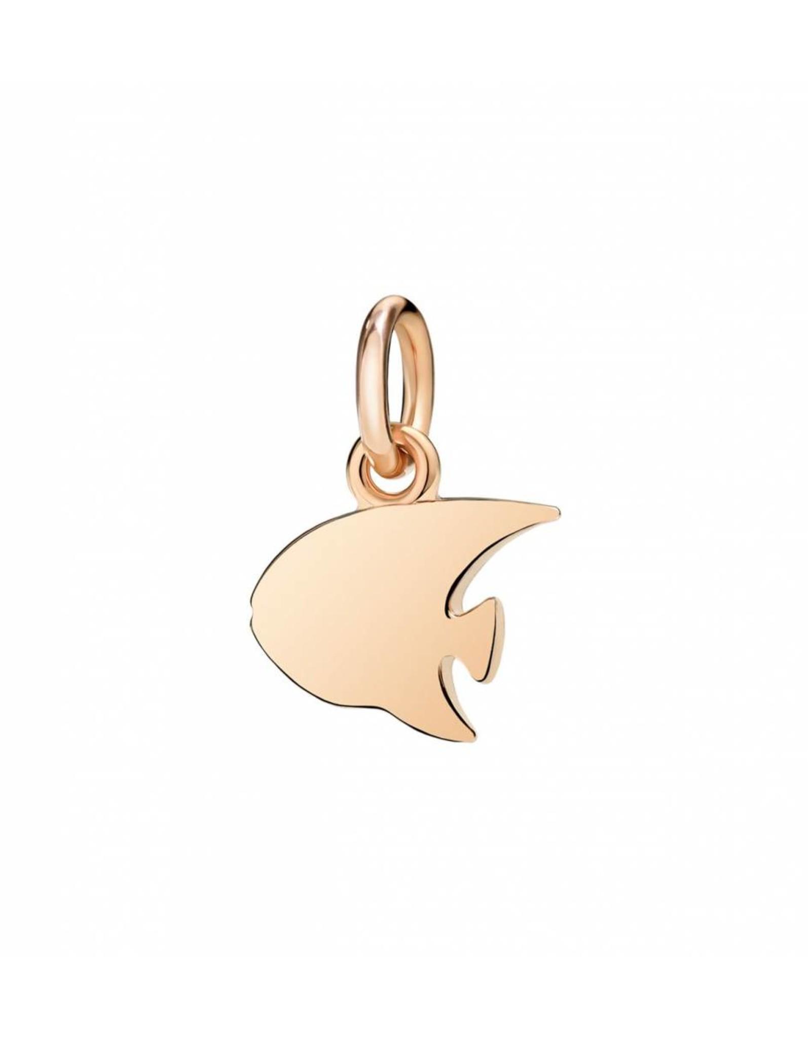 DoDo Charm Angelfish