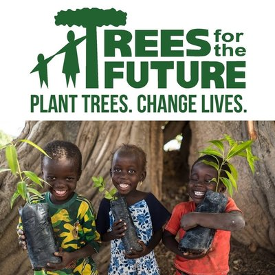 CO2 Compensatie - Plant een boom