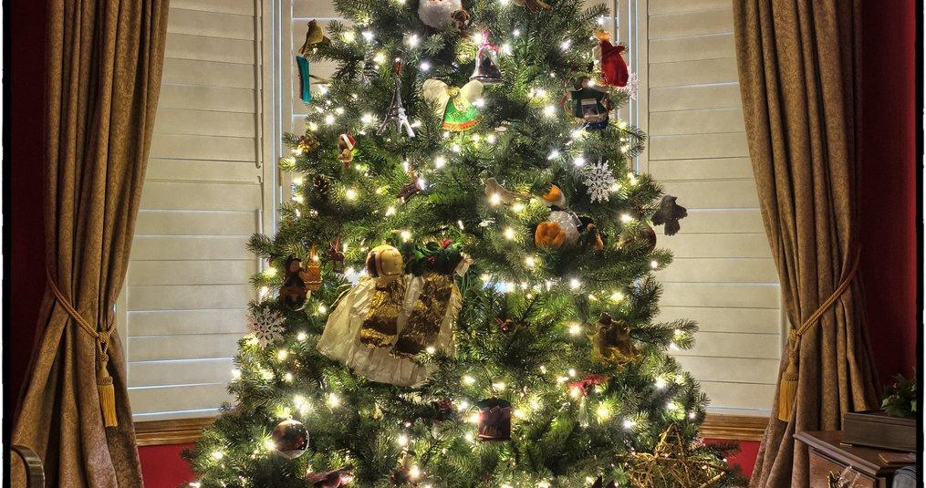 Origineelste kerstbomen
