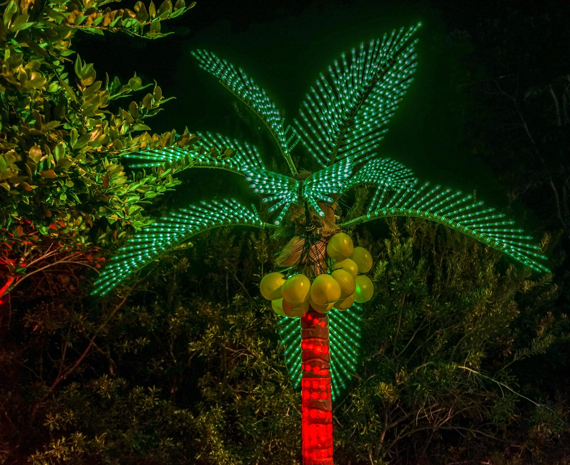 Kerst palmboom