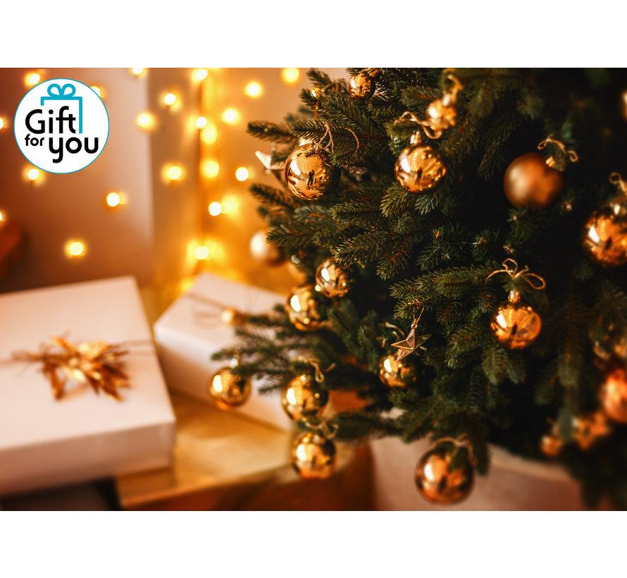Gift for you - Fijne feestdagen - Digitaal