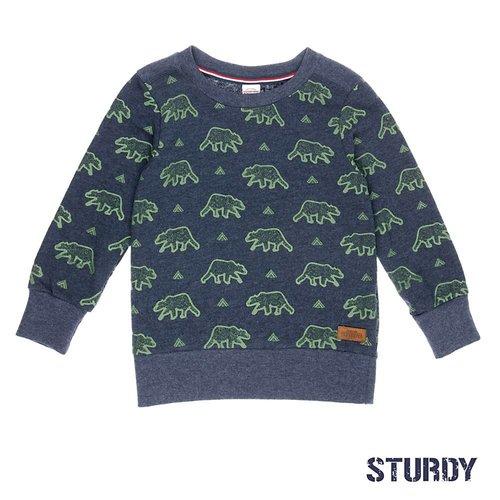 Sturdy Jongens sweater aop blauw Sturdy