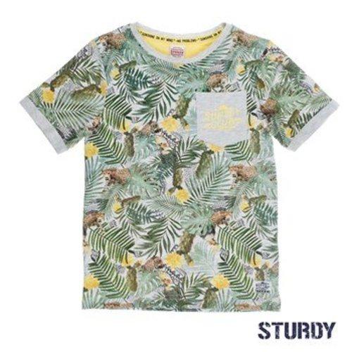 Sturdy Jongens t-shirt aop grijs Sturdy
