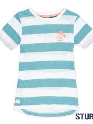 Sturdy Jongens t-shirt streep mint Sturdy