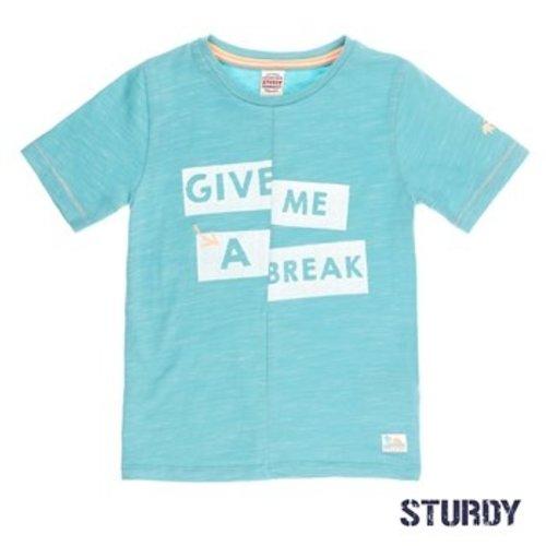 Sturdy Jongens t-shirt mint Sturdy