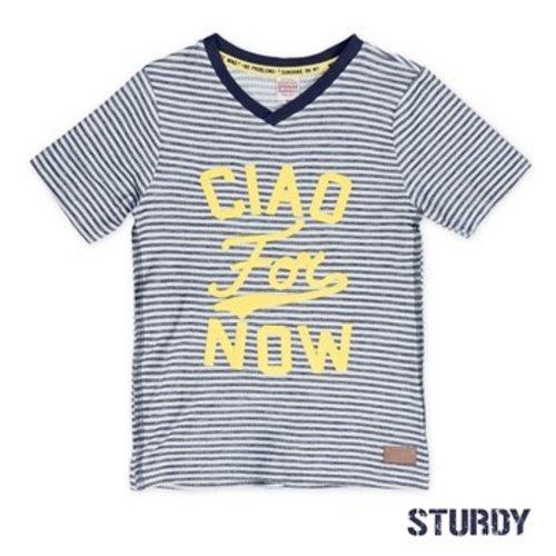 Sturdy Jongens t-shirt gestreept wit Sturdy