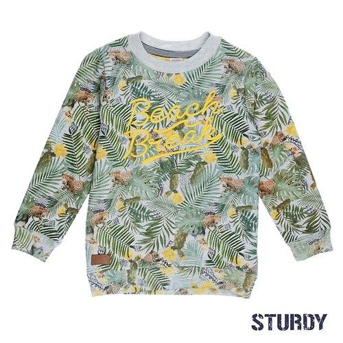 Sturdy Jongens sweater print grijs Sturdy