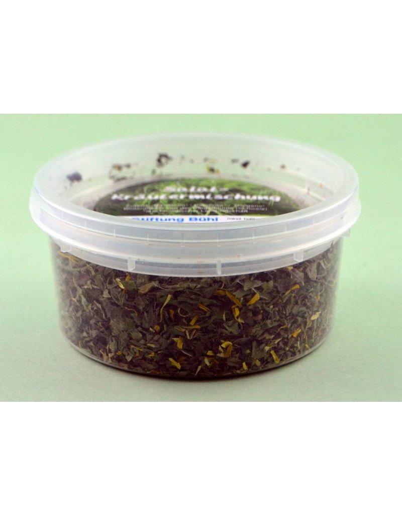 Hausmarke Stiftung Bühl Salat-Kräutermischung 20 g Nachfüllpack