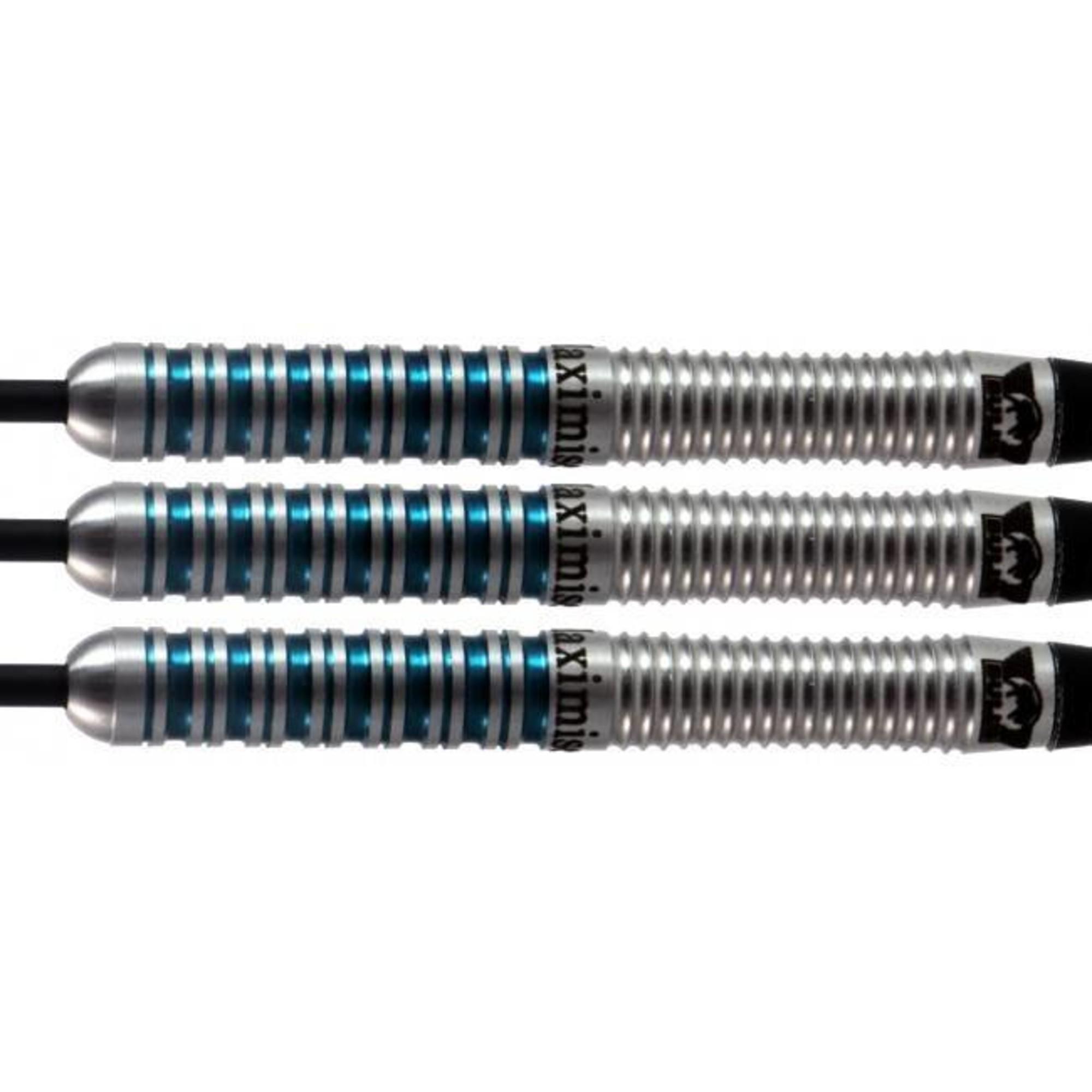 Max Hopp MAX 80/% Tungsten Steel-Dartset 22g
