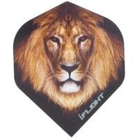 Pentathlon i - Lion