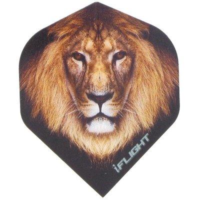 i - Lion