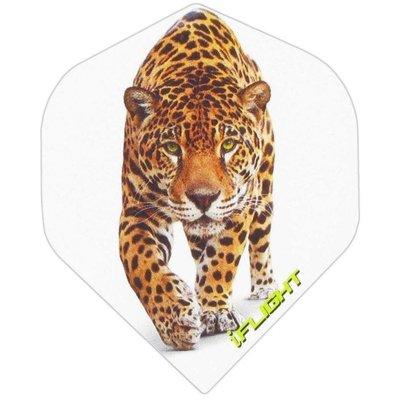 i - Panther