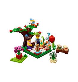 LEGO 40236 Romantic Valentine Picnic SPECIALS