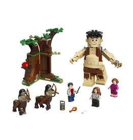 LEGO 75967 Forbidden Forrest: Umbridge's Encounter HARRY POTTER