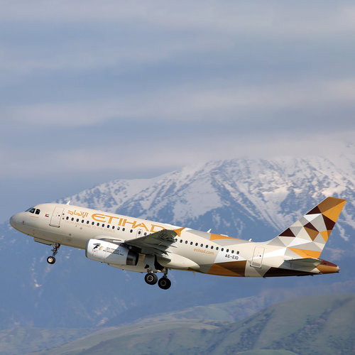 Aviationtag Aviationtag - Airbus A319 – A6-EID - Etihad Airways (gold - black - pearl)