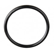 """Davey SpaPower 2 """" o-ring voor pomp"""