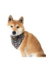 HIRO + WOLF BANDANA LUCKY DOG