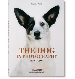 THE DOG IN PHOTOGRAPHY