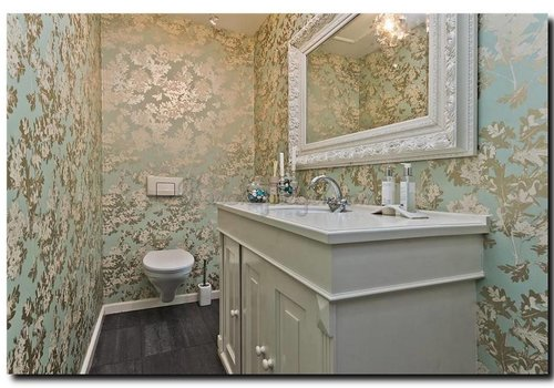 Spiegel in wc of toilet ruimte