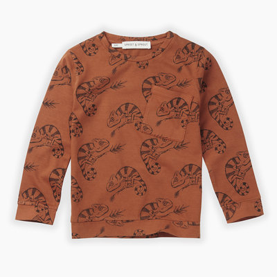 Sproet & Sprout Sproet & Sprout, longsleeve, chameleon, oranje, W19-851