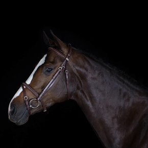 703/Q1 - Bridle with flash noseband - cow leather