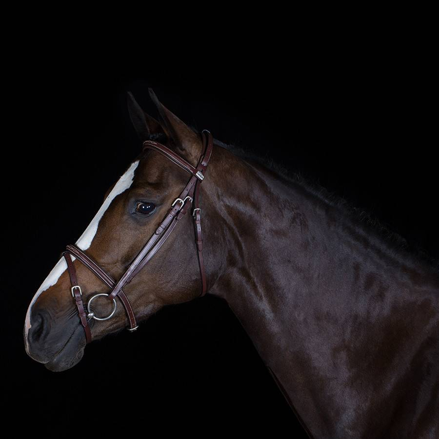 Greenfield Selection 703/Q2 - Bridle with flash noseband - calf leather excl. reins