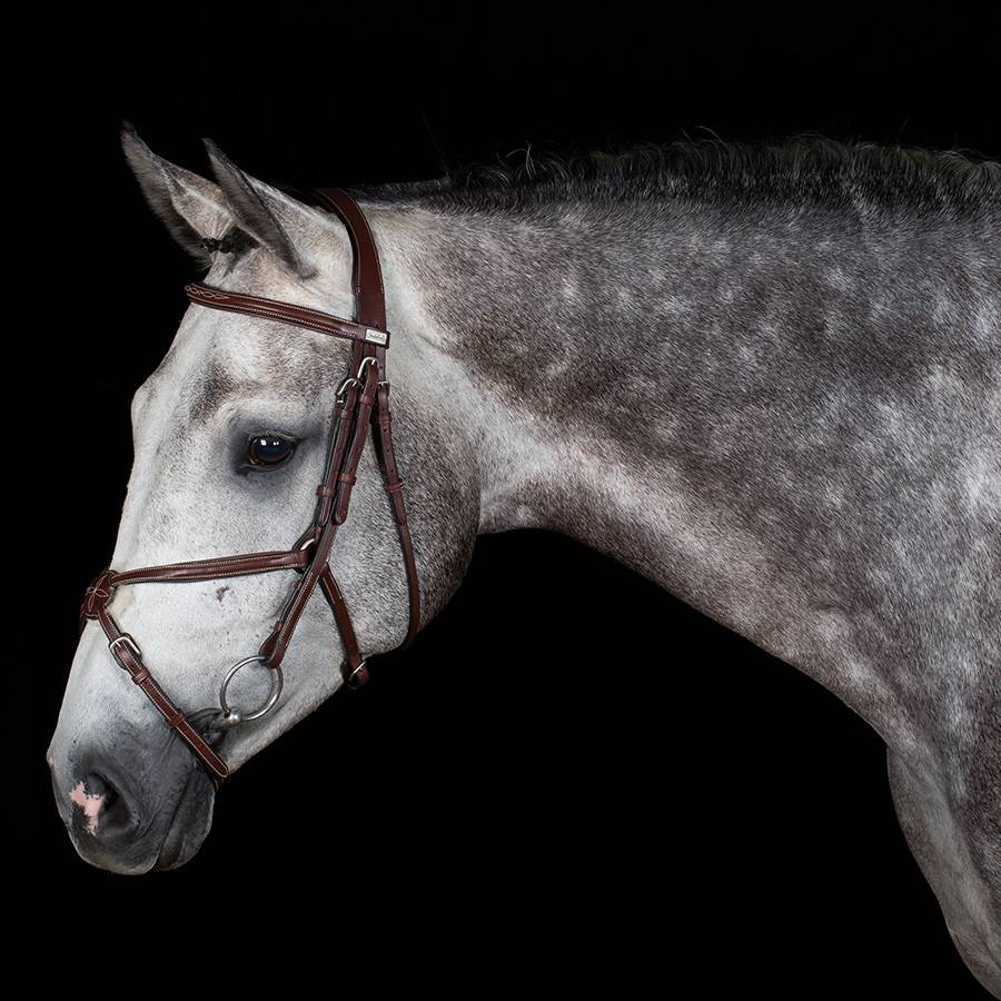 Greenfield Selection 704/Q1 - Bridle with mexican noseband - cow leather excl. reins