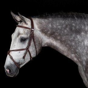 704/Q2 - Bridle with mexican noseband - calf leather