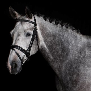 Greenfield Selection 706/Q2 - Bridle with wide flash noseband - calf leather