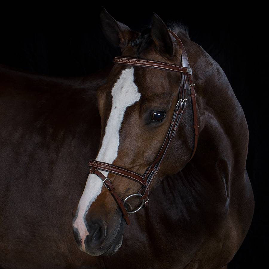 Greenfield Selection 709/Q1 - Bridle with flash noseband - cow leather