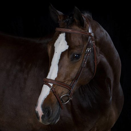Greenfield Selection 709/Q2 - Bridle with flash noseband - calf leather