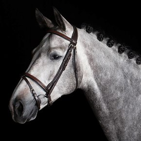 717/Q1 - Bridle with flash noseband  - cow leather